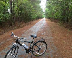Trail Biking South Carolina