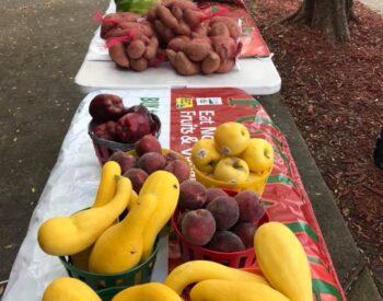 farmers markettt